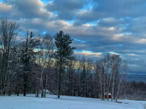 winter views of mountains and trees