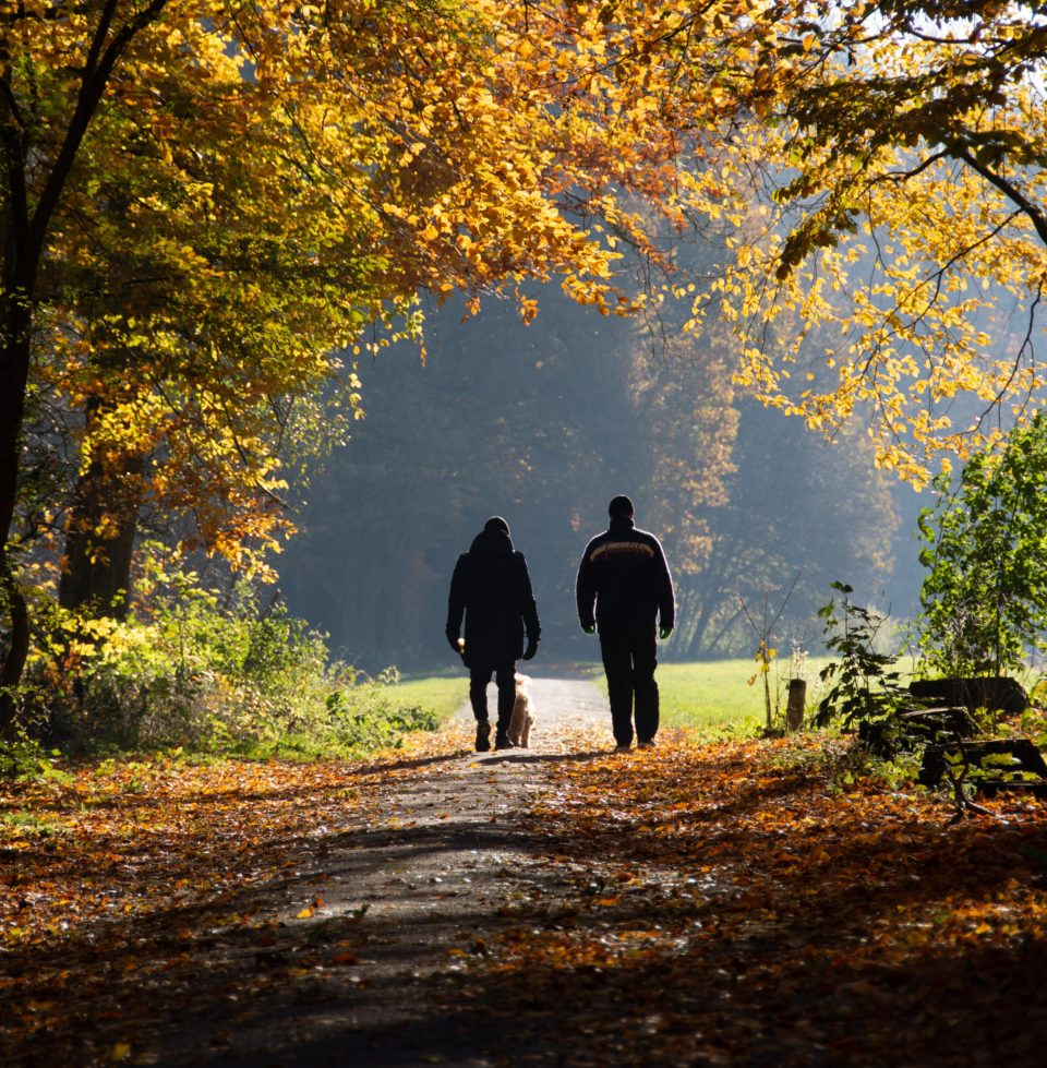 Couple with dog walking on a wooded trail