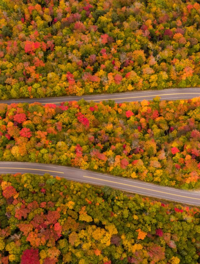 winding road viewed from above with fall foliage